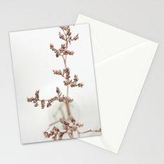 Little Secrets Stationery Cards