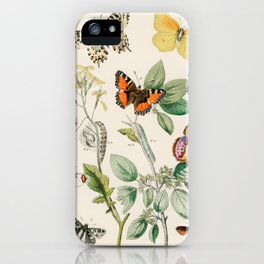 Butterflies and Moths Pattern Lepidoptera WF Kirby iPhone Case