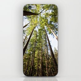 canopy  iPhone Skin