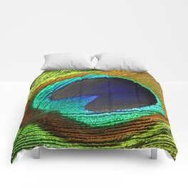 peacock feather Comforters