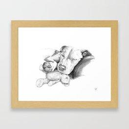 Let Sleeping Dogs Lie :: Grayscale Framed Art Print