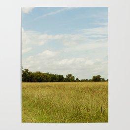 Texas Field under Blue Skies Poster