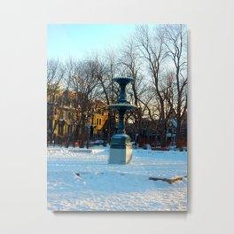 Foutain in Winter Metal Print