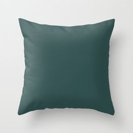 color dark slate grey Throw Pillow