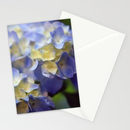 Hydrangea Stationery Cards
