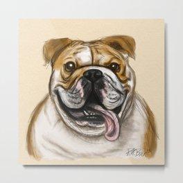 Smiling Bulldog Metal Print