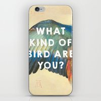 wes anderson iPhone & iPod Skins featuring Wing of a Blue Roller (1512), Albrecht Durer // Moonrise Kingdom (2012), Wes Anderson by ArtCinema