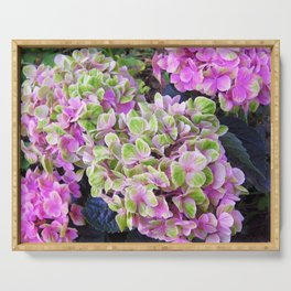 Pink & Green Hydrangea Serving Tray