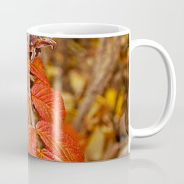 autumnal leaves Coffee Mug