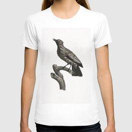Emperor bird-of-paradise female from Histoire Naturelle des Oiseaux de Paradis et Des Rolliers (1806 T-shirt