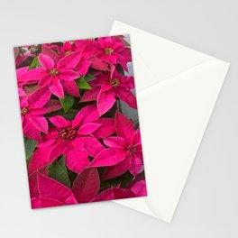 Pink stars Stationery Cards