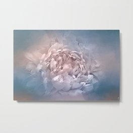 Blushing Blue and Cream Peony - Floral Metal Print