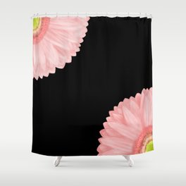 Pink Gerberas Shower Curtain
