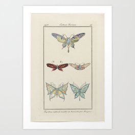 Journal des Dames and Modes, Costumes Parisiens, 1913, No. 88  Butterflies mounted natural ... anony Art Print