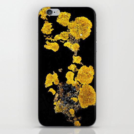Yellow Lichen iPhone Skin