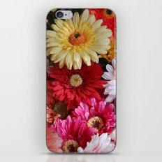 Color Burst iPhone & iPod Skin