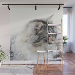 Silver Cat Wall Mural