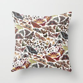 Moths of North America Pattern Throw Pillow