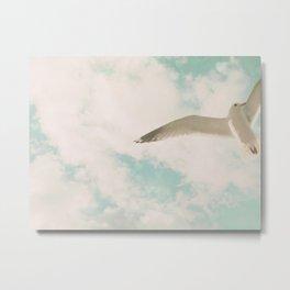 Seagull I Metal Print