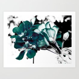 Dark Teal Flowers Art Print