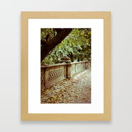 Park Framed Art Print