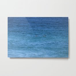 Byron Bay Dolphins Metal Print
