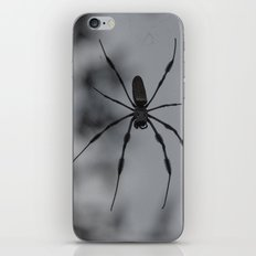 Spydey iPhone & iPod Skin
