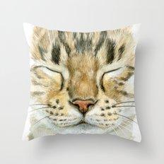 Sleeping Tabby Cat  830 Throw Pillow