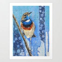 Bluethroat. Art Print