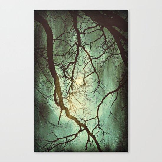 Earth's Moon Canvas Print
