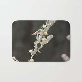 Hummingbird Hovering over Hesperaloe Parviflora Flower on Black Bath Mat