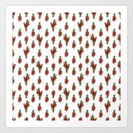 Australian Native Bottlebrush Pattern Art Print
