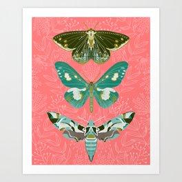 Lepidoptery No. 5 by Andrea Lauren  Art Print