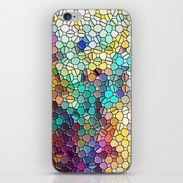Decorative Rainbow Tiled Mosaic Abstract iPhone Skin