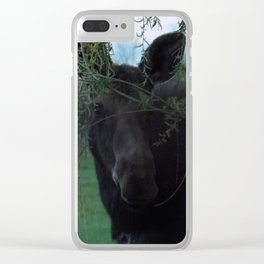 Missy Clear iPhone Case