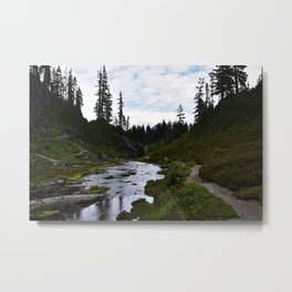 Through the woods. Metal Print