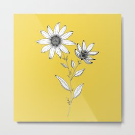 Wildflower line drawing | Botanical Art Metal Print