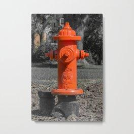 Orange Clow Medallion Fire Hydrant Orange Fire Plug Metal Print