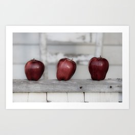 Country Apple Farm Style Art Print