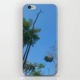 Skylight #2 iPhone Skin