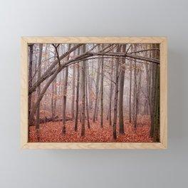 Red twilight Framed Mini Art Print