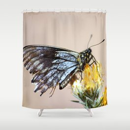 Butterfly with torn wings Shower Curtain