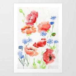 Orange Poppies with Blue Cornflowers Art Print