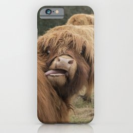 Funny Scottish Highland cow iPhone Case