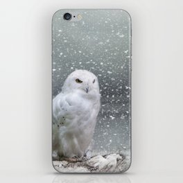 Snowy Owl iPhone Skin