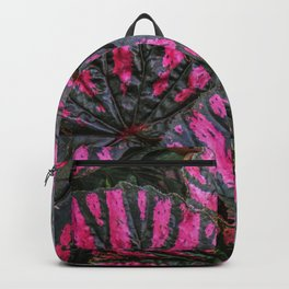 Variagation 2 Backpack
