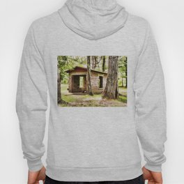 Abandoned brick building in the woods Hoody