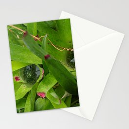 Lush Pools Stationery Cards