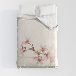 PLUM Comforters
