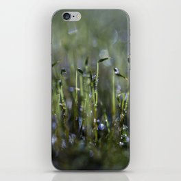 dewy moss sprouts iPhone Skin